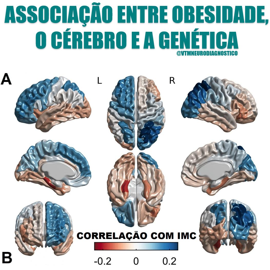 Associação entre a obesidade, o cérebro e a genética.