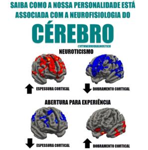 Associação Entre Personalidade e Morfologia Cerebral. VTM Neurodiagnóstico: Tratamentos e Diagnósticos em Neurologia e Saúde Mental.